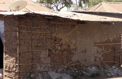 Mud wall with bamboo reinforcement, Kenya (K. Jaiswal)