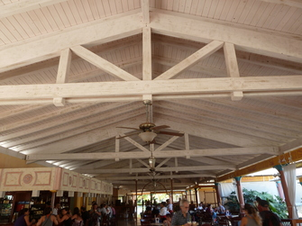 Taxonomy Wooden Structure With Light Roof Covering Rwo1